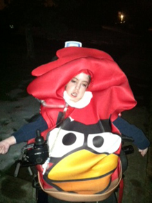Steven Angry Bird.