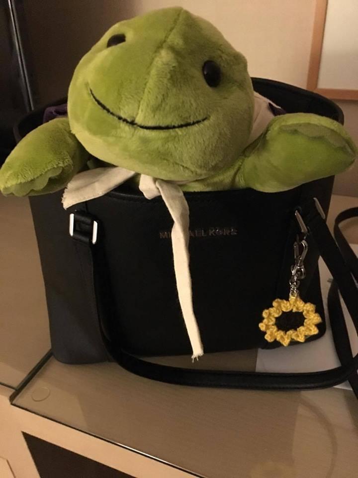 Myo in handbag