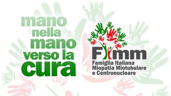 FIMM logo