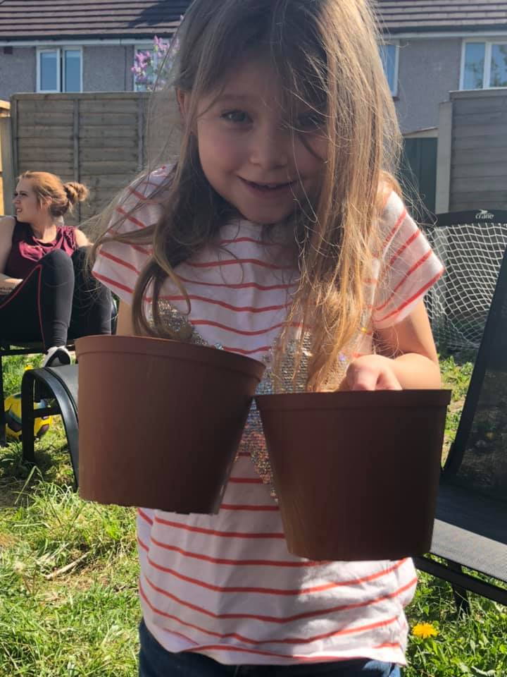 Planting sunflower seeds in Birkenhead.